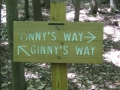 Ginny's Way